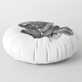 Black Geranium in White Floor Pillow