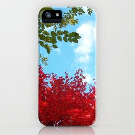 Japanese Maple in Fall with Blue Sky iPhone Case