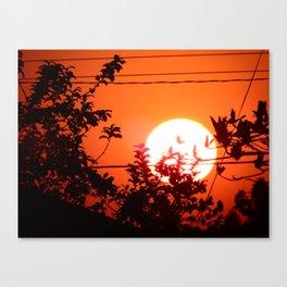 The sun of the Brazil 2 - (O sol do Brasil 2) Canvas Print
