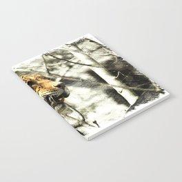 tree branch african safari animal leopard Notebook
