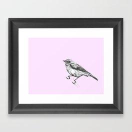 Waxeye Framed Art Print