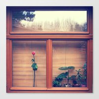 window Canvas Prints featuring window by Alfredo Rodriguez