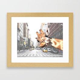 Selfie Giraffe in New York Framed Art Print
