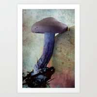 mushroom Art Prints featuring Mushroom by LoRo  Art & Pictures