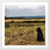 Porthos and the cows Art Print