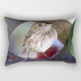 Finch Friend Rectangular Pillow