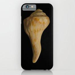 States of Erosion Image 9 Whelk Seashell Coastal Nature Photo iPhone Case