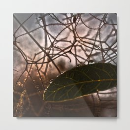 The Last Leaf in Autumn Metal Print