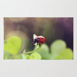 Ladybird, ladybird, fly away home.. Rug