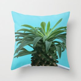 Euphorbia hypogaea(blue) Throw Pillow