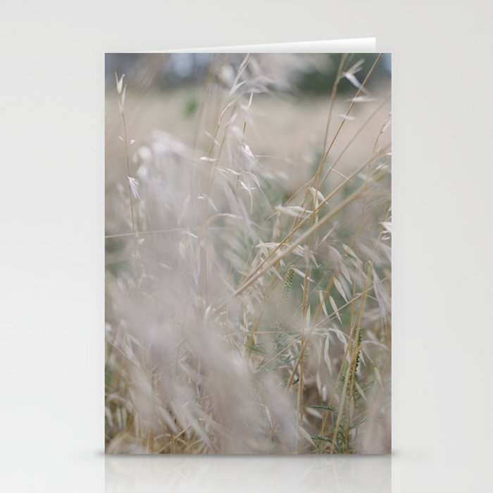 Tall wild grass growing in a meadow Stationery Cards