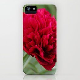 Red Peony in Bloom iPhone Case