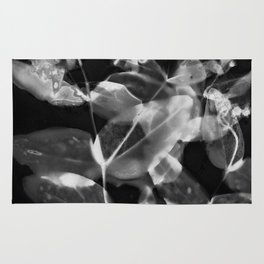 X Ray Blooms Rug