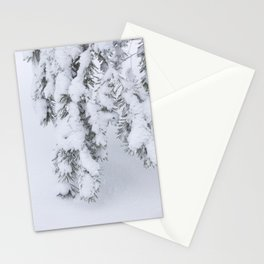 Winter's Pine 1 Stationery Cards