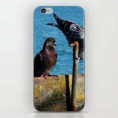 Drinking Pigeons iPhone & iPod Skin