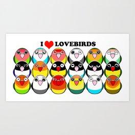 Lovebird colour mutations Art Print