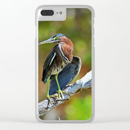 Coastal Living in Ding Clear iPhone Case