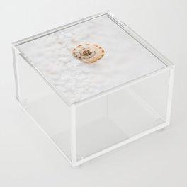 SMALL SNAIL Acrylic Box