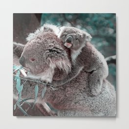 Koala, Mummy and Baby Metal Print