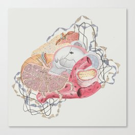 Collage with Medical Illustration Canvas Print
