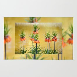 Orange lily flowers Fritillaria imperialis Rug