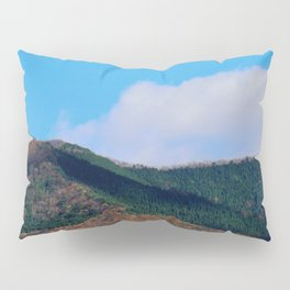 Peeking (Japan) Pillow Sham