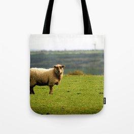 Solitary Sheep Tote Bag
