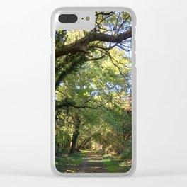 Wye Island - Eastern Shore, MD Clear iPhone Case
