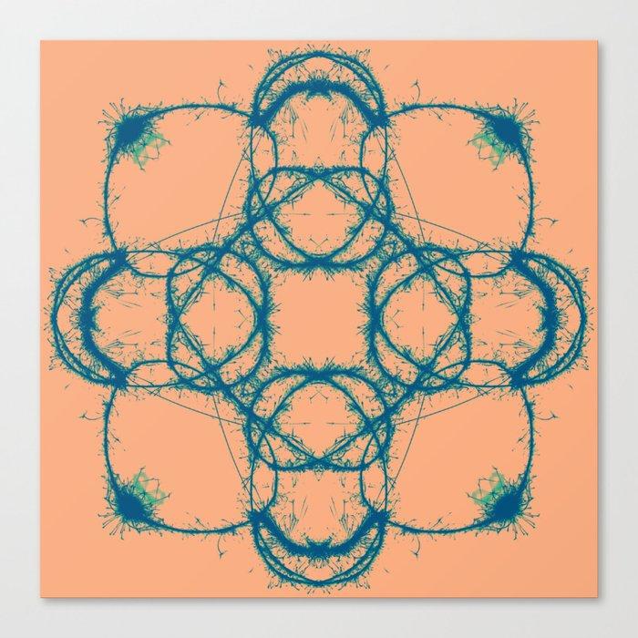 Sparks Canvas Print