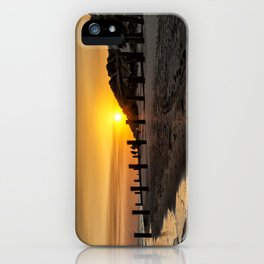 Crow Point iPhone Case