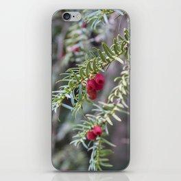 Autumnal Berries iPhone Skin