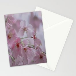 Delicate Pink Blossoms Stationery Cards