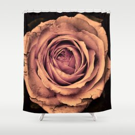 Vintage Rose,peach Shower Curtain