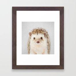 Hedgehog - Colorful Framed Art Print