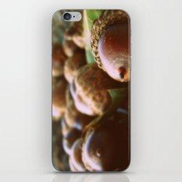 Acorns 2 iPhone Skin