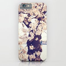 Cherry Tree in bloom Slim Case iPhone 6s