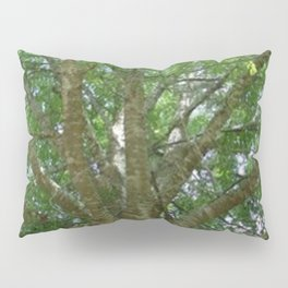 Wise Old Tree Too Pillow Sham