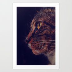 Profile of a Cat Art Print