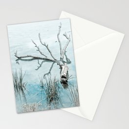 Fallen Branch Stationery Cards