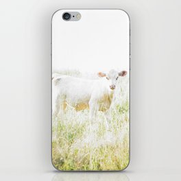 Not a lamb iPhone Skin