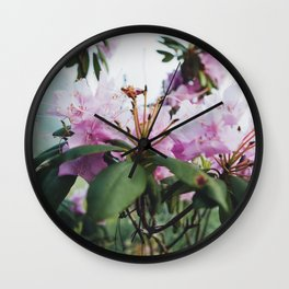 A new perspective.  Wall Clock