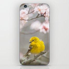 Pine Warbler #society6 #decor #buyart iPhone Skin