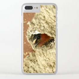 Cliff Swallow Home Sweet Home Clear iPhone Case