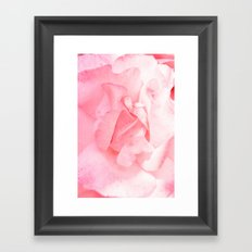 Bulgarian Rose I Framed Art Print