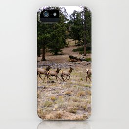 Colorado, wildlife iPhone Case
