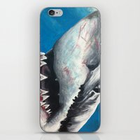 shark iPhone & iPod Skins featuring Shark by Kristin Frenzel