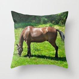 A Grazing Horse Throw Pillow