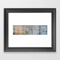 Blossom Pano Framed Art Print