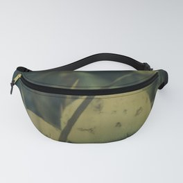 Magic Mushrooms Fanny Pack