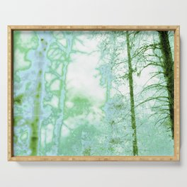 Magical forest in frosty greens Serving Tray